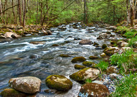 Middle Prong of Pigeon River in the Smokies(WC)