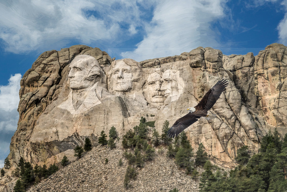Mount Rushmore and eagle  12x18