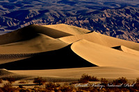 Death Valley NP dunes 12x18 (1 of 1)